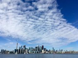 Toronto, you beauty.