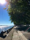 toronto-waterfront-on-lake-ontario-2