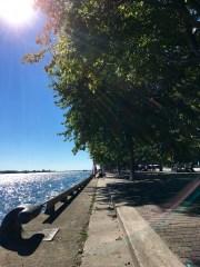 toronto-waterfront-on-lake-ontario-2