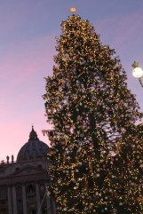 This is the Vatican's Christmas tree in St Peter's square. Also, you may want to notice the #skyporn situation