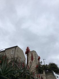 Picasso Museum building - Antibes Water meetup 22-28.02.2018