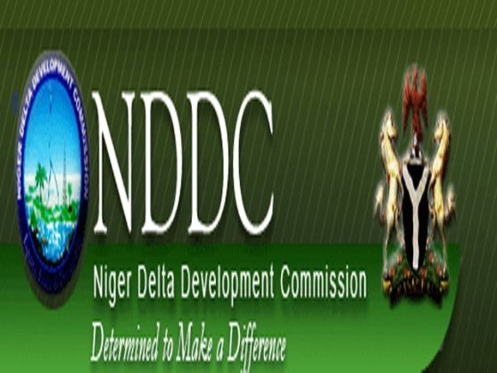 Image result for nddc nigeria