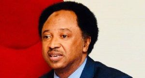 Stop labeling soldiers as Muslims, Christians – responds Shehu Sani Gumi