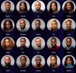 BBNaija 2020: Top 5 millionaire housemates revealed