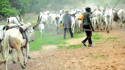 Suspected herdsmen in Ogun state hack another girl to death