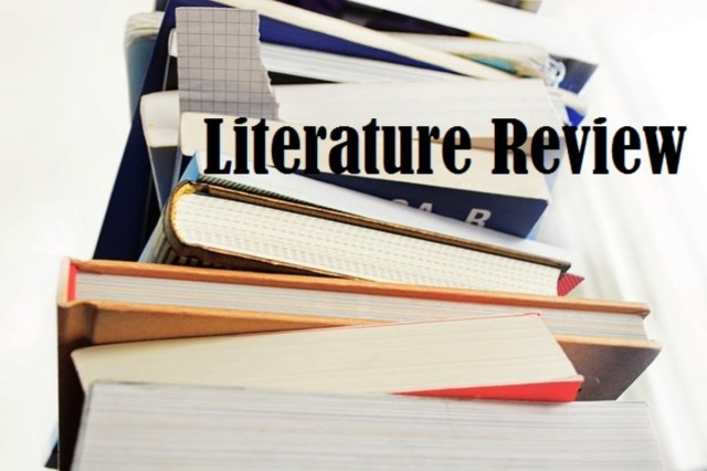 How to write an effective literature review - Daily Post Nigeria