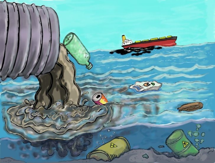 The Degradation of the environment