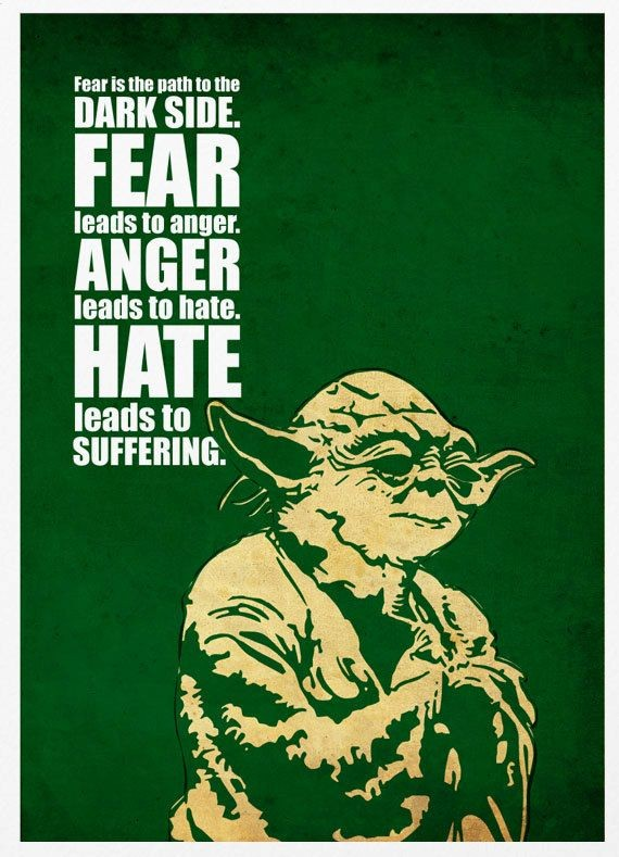 Fear is the path to the dark side. Fear leads to anger. Anger leads to hate. Hate leads to suffering. Yoda quote