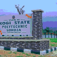 Kidnappers Abduct Two Kogi Poly Students, Demands N3 Million | Daily Report Nigeria