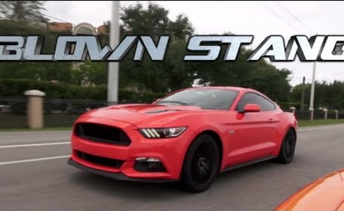 Supercharged Mustang 5.0 battles SRT Viper TA on the street!