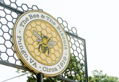 Local Business Spotlight: The Bee and the Biscuit
