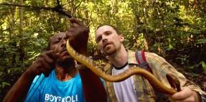 """Deux herpétologues de l'expédition """"Boyekoli Ebale Congo 2010 """" découvrent un serpent (Toxicodryas blandingi) dans un filet tendu pour attraper des chauves-souris. © Kris Pannecoucke"""