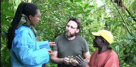 Le Dr Jérôme Degreef, lors de la mission Rwanda Fungi 2015. © Frank Hidvégi