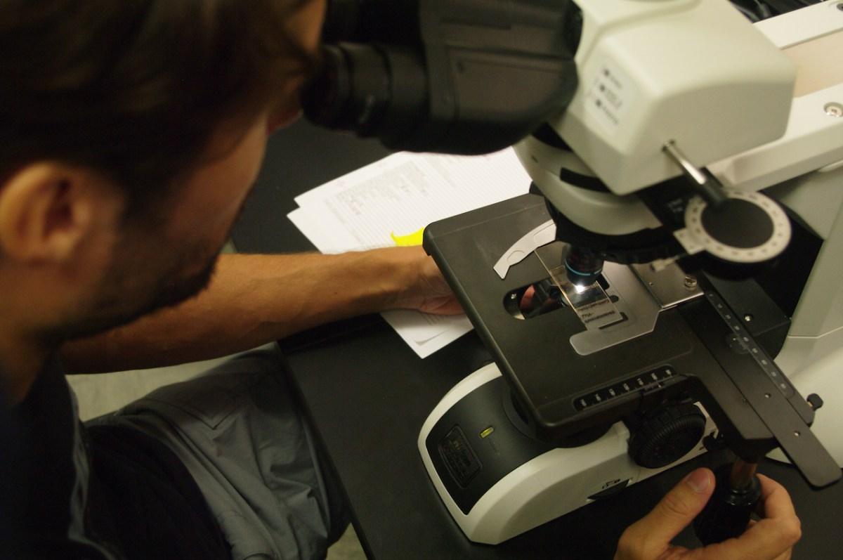 L'étude des échantillons prélevés sur le terrain se fait au microscope, ici dans le laboratoire du Pr Rosen © Simon Jusseret