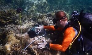 Stépahne Roberty mesure l'activité photosynthétique Photo Eric Béraud, Centre Scientifique Monaco.
