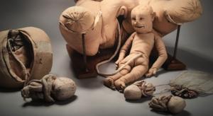 La machine à enseigner l'accouchement, dAngélique Marguerite Du Coudray (1715-1794).