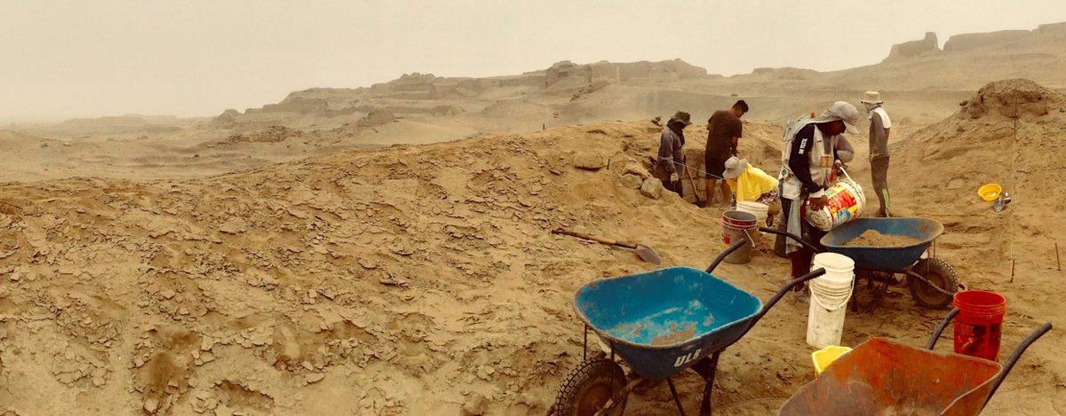 Vue générale du site de fouilles, projet Ychsma / ULB. © ULB-CReA-Patrimoine