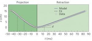 Profil cinématique d'un «coup de langue» lors de la capture d'un criquet. La vitesse a été mesurée au «bout de la langue» de l'animal par rapport à la pointe de son museau.