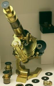 Microscope Seibert