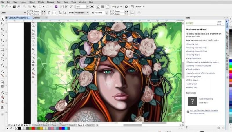 CoCorelDRAW Graphics Suite windows