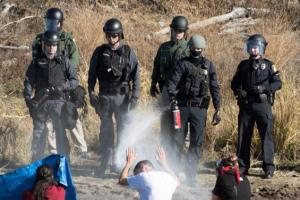 http://www.nydailynews.com/news/national/cops-pepper-spray-rubber-bullets-standing-rock-protesters-article-1.2856597