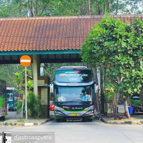 Nomor Telepon Agen bus PO Haryanto