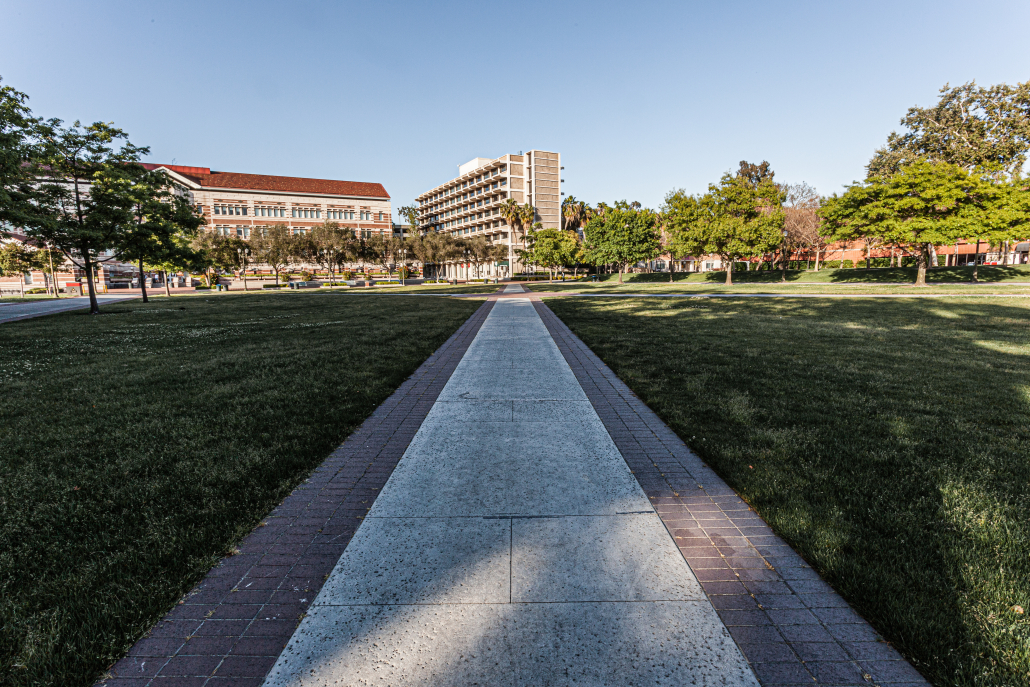 The once vibrant and active McCarthy Quad is instead now surrounded by overarching trees shadowing the courtyard. The red-bricked lined path leads to the multiple story Birnkrant Residential College with green grass following the walkway.