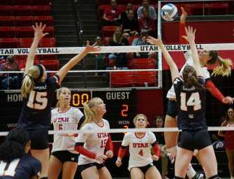 Utes go 1-1 over the weekend