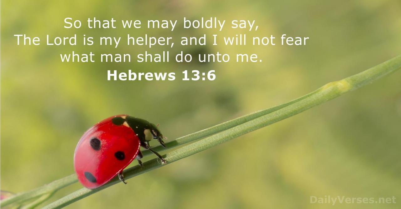 Hebrews 13:6 - ESV - Bible verse of the day - DailyVerses.net