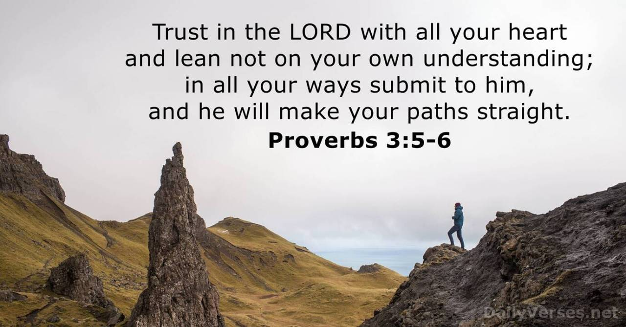 Proverbs 3:5-6 - Bible verse of the day - DailyVerses.net