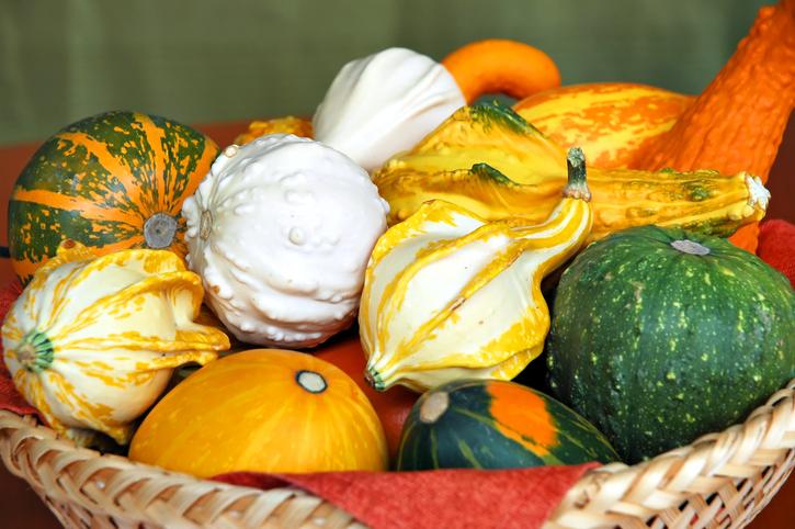 different types of pumpkin