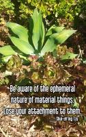 Quote - attachment garden 2