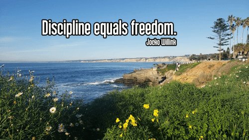 clear blue sky over rocky beach at low tide on california coastline with yellow flowers and green leaves in foreground buildings along coast and boardwalk leading down to rocky beach and blue water - tapas discipline self-discipline Quote: Discipline equals freedom. - Jocko Willink