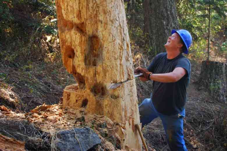 Gabe Howe helps fell a dead tree that was creating a hazard along the Pilot Rock Trail in the Soda Mountain. Wilderness