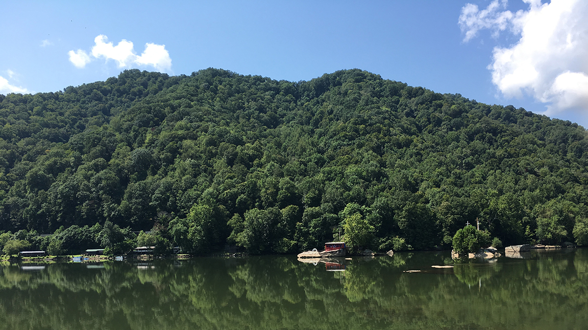 photo of green forested mountain tops and their reflection in the water of a river