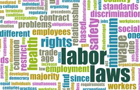 DOMESTIC WORKERS BASIC CONDITIONS OF EMPLOYMENT