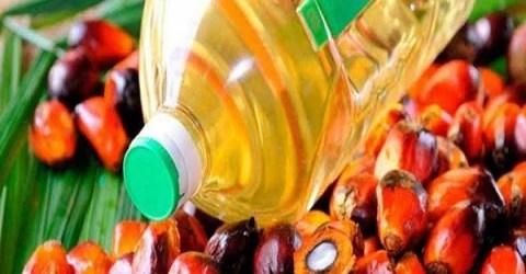 মালয়েশিয়ান পাম অয়েলের ৩% মূল্যবৃদ্ধি