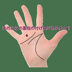 掌の薬指の下にあるホクロ占い