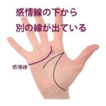 感情線の枝分かれ ④下向きに別の支線が出ている手相(慈愛線)