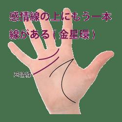 手相|金星帯|金星環