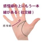 感情線の上にもう一本別の線がある手相-その2(社交線)