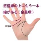 感情線の上にもう一本別の線がある手相-その3(金星環・金星帯)