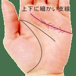 感情線の上下に細かい支線や枝分かれがある手相