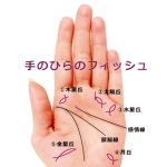 【手相紋占い④】手のひらにフィッシュ(魚紋)がある手相