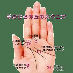 手のひらのスクエア紋
