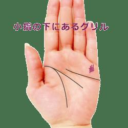 小指の下のグリル