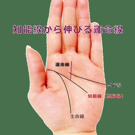 頭脳線から運命線が伸びる手相の画像