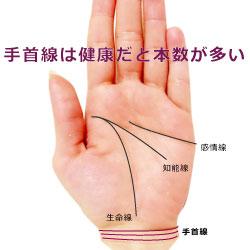 手相の手首線の本数