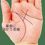 生命線から薬指に伸びる支線がある手相