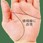 感情線に合流する頭脳線(マシカケ)